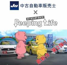 JU Chuuko Jidousha Hanbaishi x Peeping Life