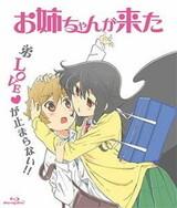 Oneechan ga Kita: Hajimete no… Kitaa!