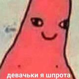 БухойПатиссон